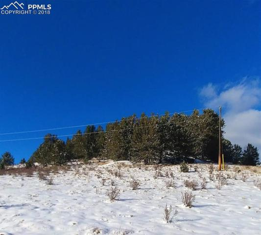 9980 S Highway 67 Highway, Cripple Creek, CO 80813 (#3531972) :: The Daniels Team