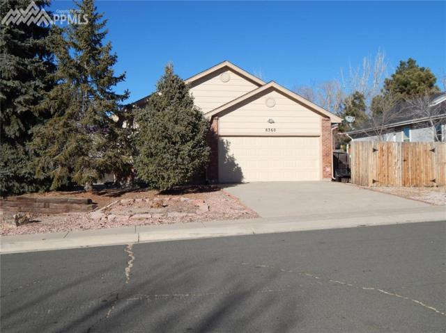 8360 Candon Drive, Colorado Springs, CO 80920 (#3533033) :: The Cutting Edge, Realtors