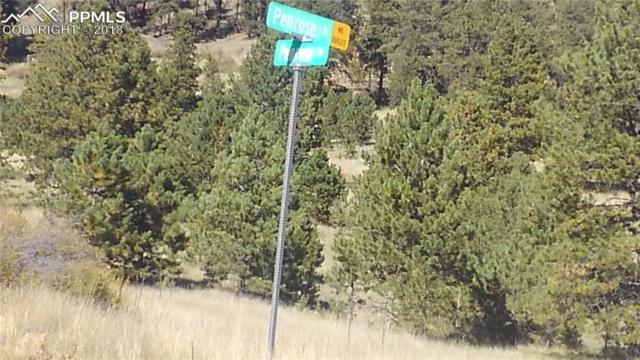 Penrose Circle, Cripple Creek, CO 80813 (#3533628) :: The Peak Properties Group