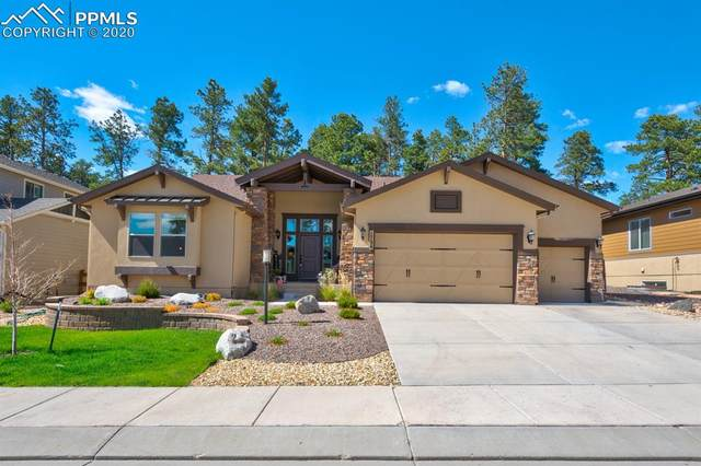 1726 Catnap Lane, Monument, CO 80132 (#3534230) :: The Treasure Davis Team