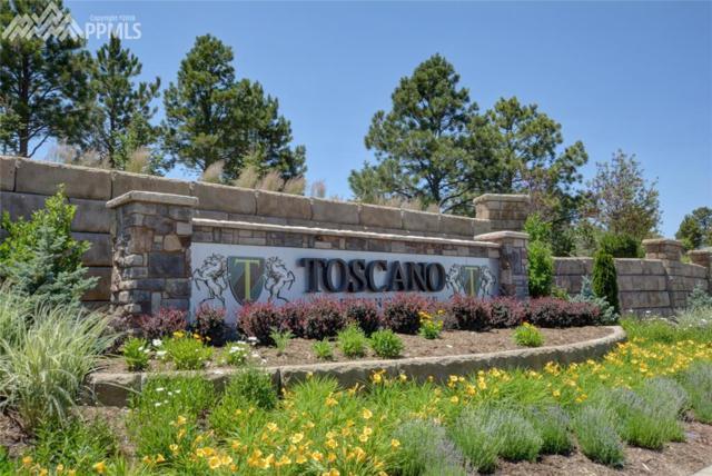1844 Vine Cliff Heights, Colorado Springs, CO 80921 (#3535180) :: Fisk Team, RE/MAX Properties, Inc.