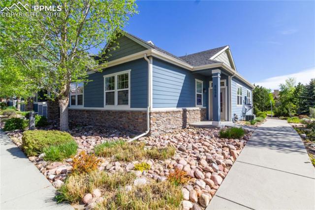 8658 Ethan Alley, Colorado Springs, CO 80924 (#3537690) :: The Kibler Group