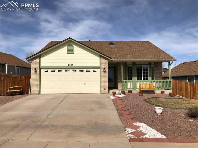7528 Farmcrest Road, Colorado Springs, CO 80925 (#3537992) :: CC Signature Group