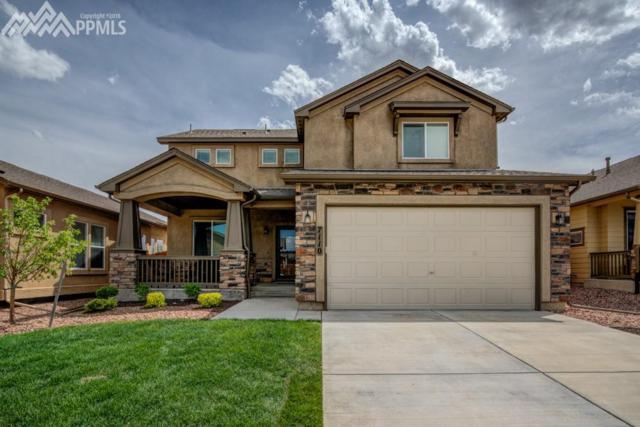 7110 Mustang Rim Drive, Colorado Springs, CO 80923 (#3539643) :: 8z Real Estate