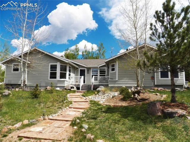 300 Comanche Trail, Woodland Park, CO 80863 (#3539974) :: Fisk Team, RE/MAX Properties, Inc.