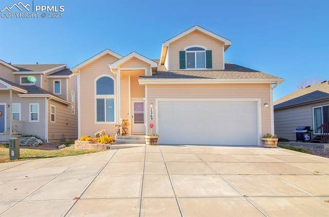 7269 Maybeck View, Peyton, CO 80831 (#3547172) :: Tommy Daly Home Team