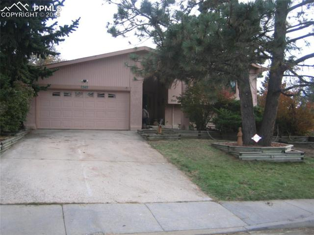 3345 Bell Mountain Drive, Colorado Springs, CO 80918 (#3552937) :: The Daniels Team
