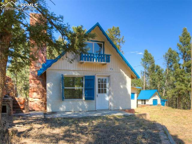 83 Gentian Road, Woodland Park, CO 80863 (#3555895) :: Action Team Realty