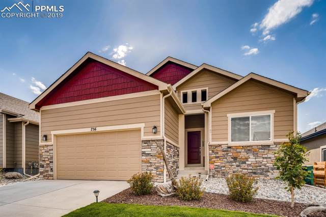 756 Tailings Drive, Monument, CO 80132 (#3556664) :: Action Team Realty