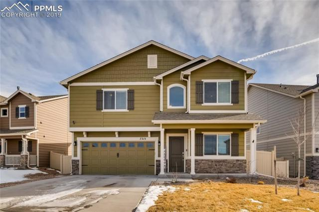 7215 Cedar Brush Court, Colorado Springs, CO 80908 (#3560135) :: The Daniels Team