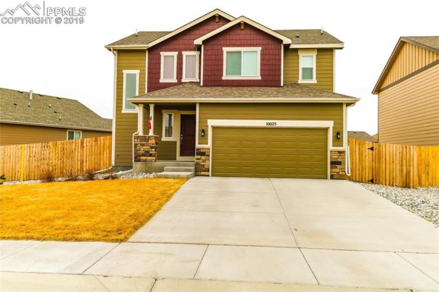 10025 Thunderbolt Trail, Colorado Springs, CO 80925 (#3563236) :: 8z Real Estate