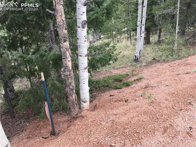 633 Calcite Drive, Divide, CO 80814 (#3566003) :: 8z Real Estate