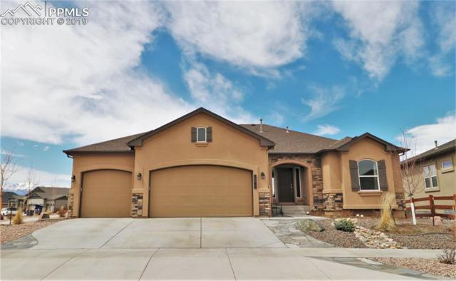 7162 Silver Buckle Drive, Colorado Springs, CO 80923 (#3573174) :: Venterra Real Estate LLC