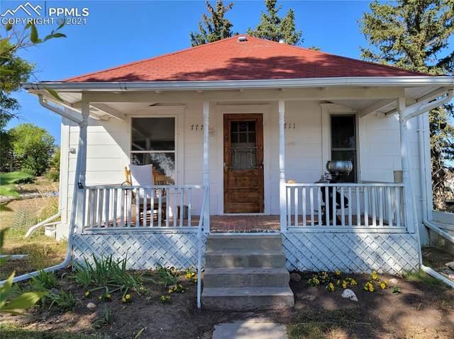 711 Navajo Avenue, Simla, CO 80835 (#3578475) :: The Treasure Davis Team | eXp Realty