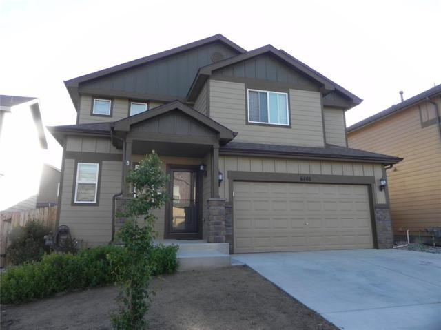 6148 Wood Bison Trail, Fountain, CO 80925 (#3580013) :: Action Team Realty