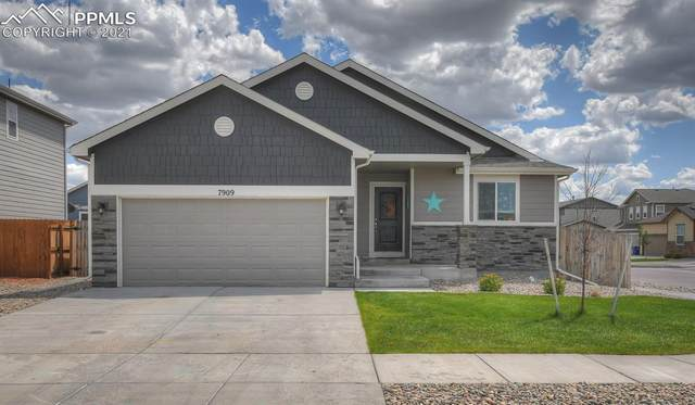 7909 Broderick Court, Colorado Springs, CO 80927 (#3581546) :: Action Team Realty