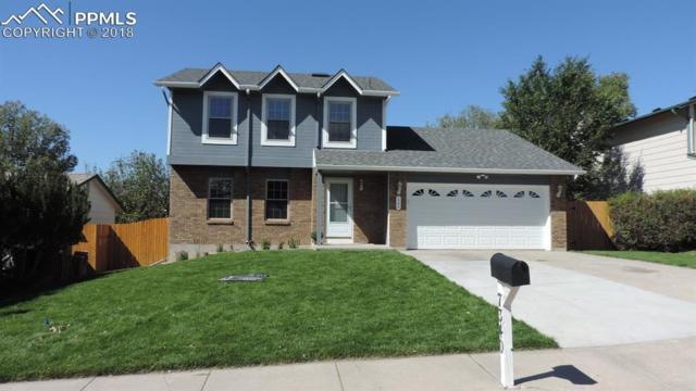 7340 Windy Peak Drive, Colorado Springs, CO 80911 (#3585258) :: 8z Real Estate