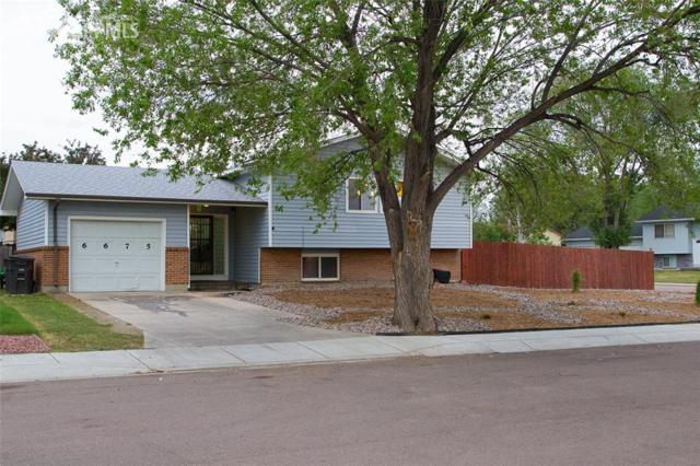 6675 Defoe Place, Colorado Springs, CO 80911 (#3586581) :: Colorado Home Finder Realty