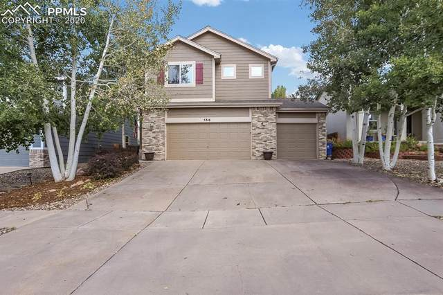 5316 Stone Fence Drive, Colorado Springs, CO 80922 (#3588671) :: Tommy Daly Home Team