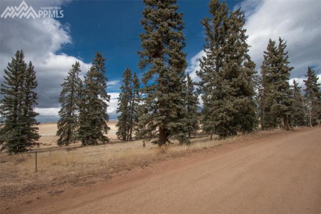 197 Joshua Road, Divide, CO 80814 (#3589131) :: The Peak Properties Group