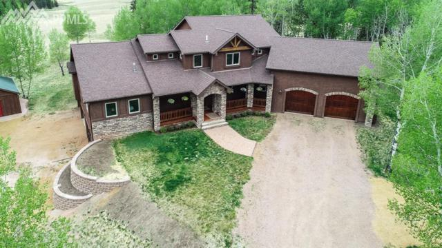 1471 County 51 Road, Divide, CO 80814 (#3590200) :: The Hunstiger Team
