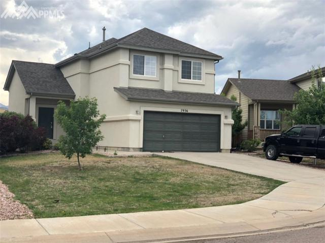 7936 Catbird Court, Fountain, CO 80817 (#3592019) :: Fisk Team, RE/MAX Properties, Inc.