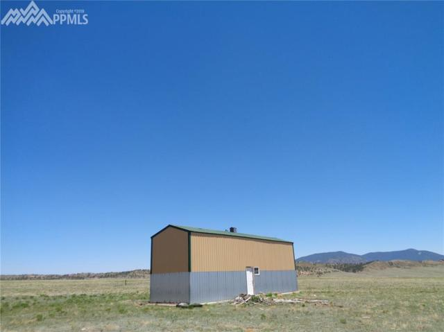 1010 Elkhorn Road, Hartsel, CO 80449 (#3595836) :: 8z Real Estate