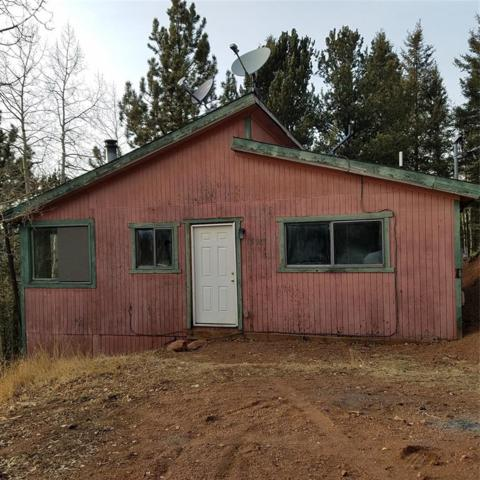 1821 Calcite Drive, Divide, CO 80814 (#3600464) :: The Peak Properties Group