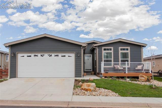4456 Gray Fox Heights, Colorado Springs, CO 80922 (#3601287) :: The Treasure Davis Team