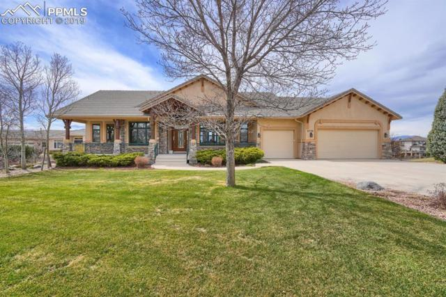 9770 Pinnacle Knoll Court, Colorado Springs, CO 80920 (#3602430) :: Perfect Properties powered by HomeTrackR