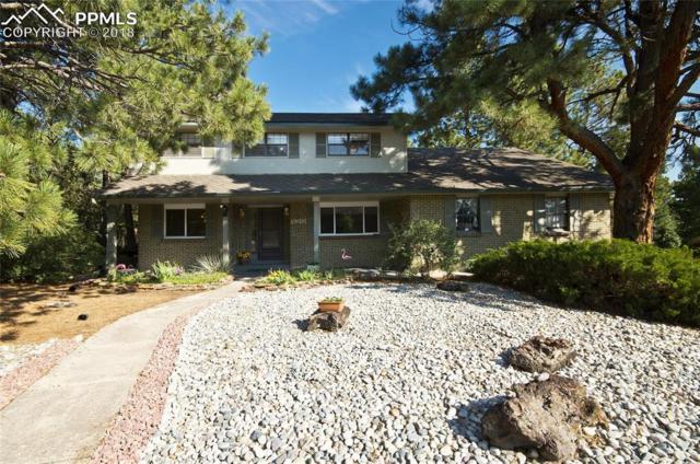 520 Carved Terrace, Colorado Springs, CO 80919 (#3605888) :: The Treasure Davis Team