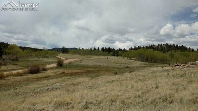 709 Hidden Valley Drive, Florissant, CO 80816 (#3609118) :: The Daniels Team