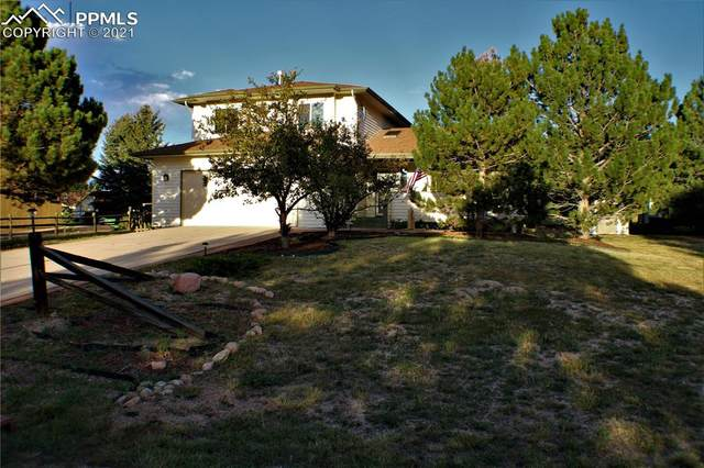 18170 Briarhaven Court, Monument, CO 80132 (#3610385) :: Tommy Daly Home Team
