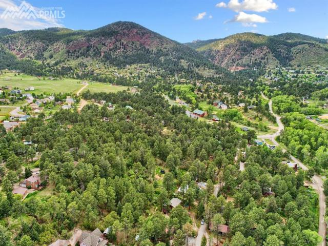 Fowler Branch, Palmer Lake, CO 80133 (#3610923) :: The Treasure Davis Team