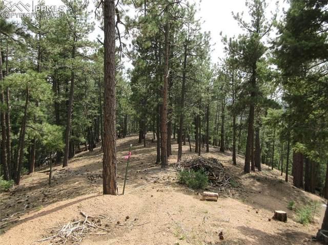 2255 Elk Park Road, Larkspur, CO 80118 (#3612426) :: The Treasure Davis Team