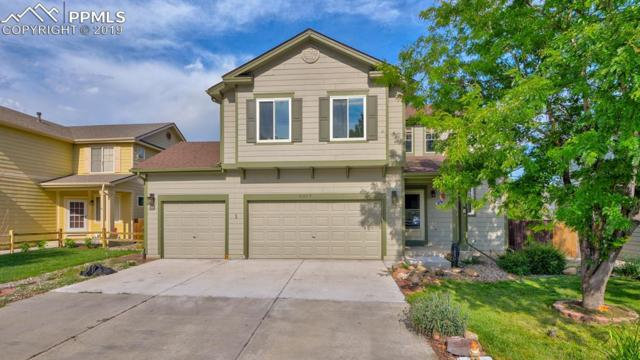 8329 Hurley Drive, Fountain, CO 80817 (#3614691) :: Tommy Daly Home Team