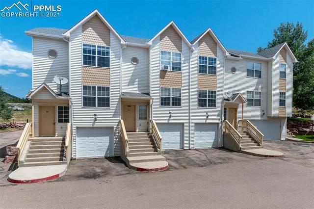 64 Vale Circle, Palmer Lake, CO 80133 (#3616918) :: Fisk Team, RE/MAX Properties, Inc.