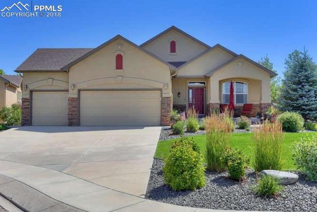 10705 Black Elk Way, Colorado Springs, CO 80908 (#3617794) :: The Dunfee Group - powered by eXp Realty