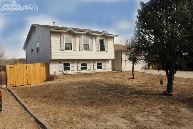 2110 Rusty Hinge Drive, Colorado Springs, CO 80920 (#3619098) :: 8z Real Estate