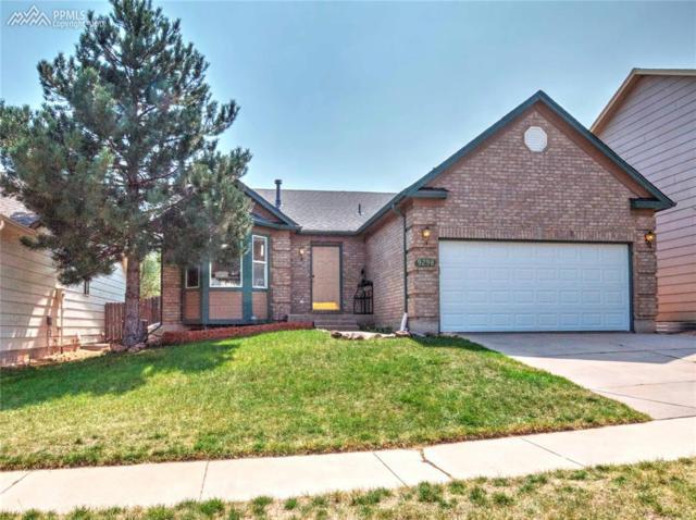9298 Prairie Clover Drive, Colorado Springs, CO 80920 (#3620180) :: 8z Real Estate