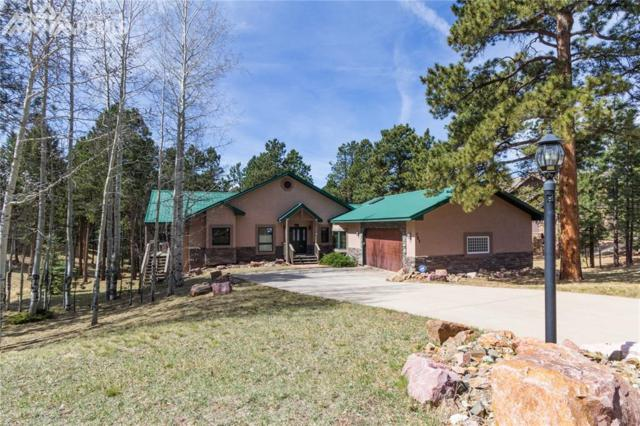 751 Skyline Drive, Woodland Park, CO 80863 (#3620700) :: Jason Daniels & Associates at RE/MAX Millennium