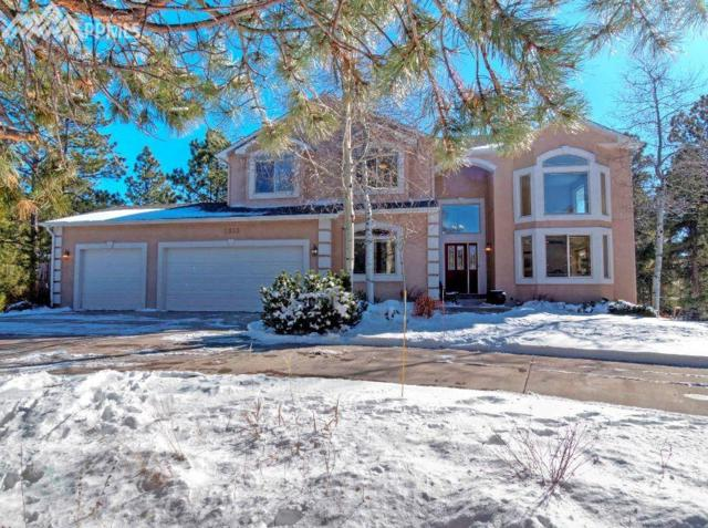 1355 Ambergate Court, Monument, CO 80132 (#3621170) :: 8z Real Estate