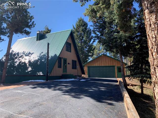 235 Ute Trail, Woodland Park, CO 80863 (#3621801) :: Fisk Team, RE/MAX Properties, Inc.