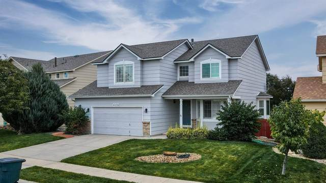 4124 Round Hill Drive, Colorado Springs, CO 80922 (#3622451) :: 8z Real Estate
