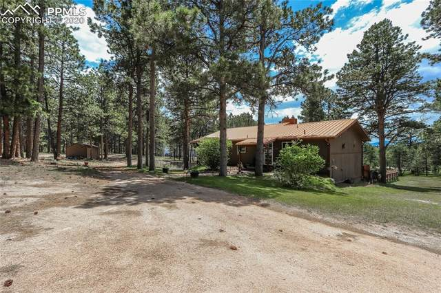410 E Stirrup Trail, Monument, CO 80132 (#3625232) :: Tommy Daly Home Team