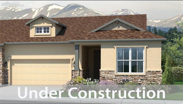 3245 Excelsior Drive, Colorado Springs, CO 80920 (#3625947) :: 8z Real Estate