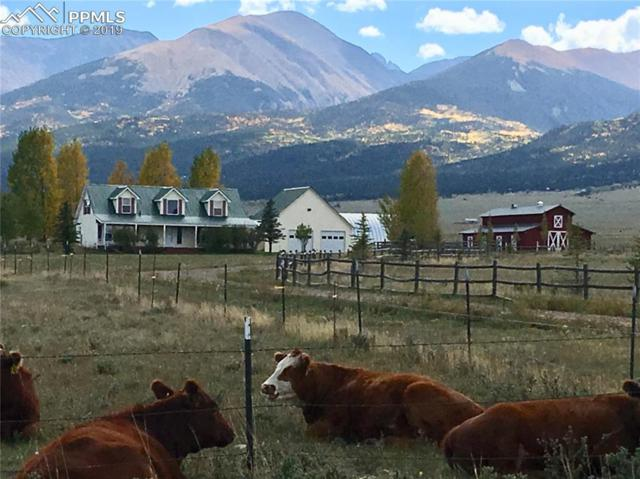 800 County 136 Road, Westcliffe, CO 81252 (#3630357) :: Jason Daniels & Associates at RE/MAX Millennium