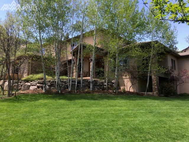 536 Silver Oak Grove, Colorado Springs, CO 80906 (#3630433) :: The Treasure Davis Team