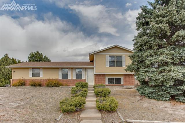 3110 Zephyr Drive, Colorado Springs, CO 80920 (#3630685) :: 8z Real Estate