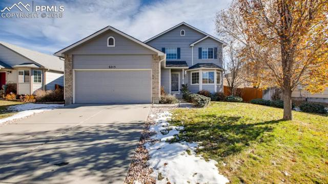 6215 Hartman Drive, Colorado Springs, CO 80923 (#3633507) :: CC Signature Group